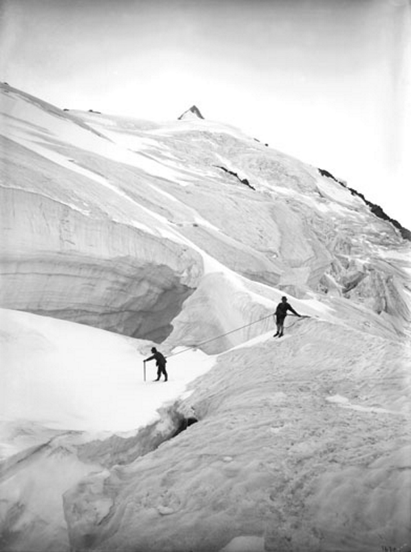 Climbers Descending Hoffman Route, Gross Glockner, 1893